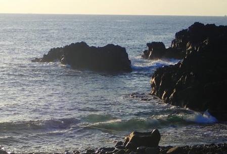 11/15(日)海洋公園は潜水注意でオープン
