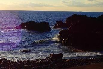 11/21(土)海洋公園でスキンダイビングツアー