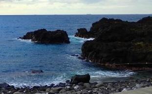 11/22(日))穏やかな海洋公園になりました