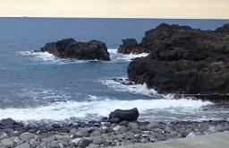 11/29(日)少し風波のある海洋公園