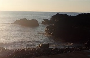 12/13(日)ダイバーで賑わっている海洋公園