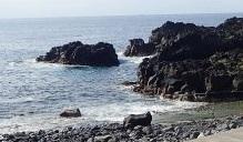 4/27(火)穏やかになった海洋公園