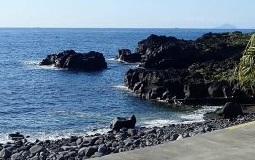 伊豆海洋公園20210503