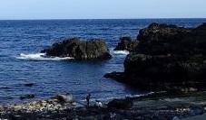 5/4(火)終日穏やかな海洋公園