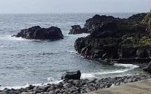 5/17(月)海洋公園でファンダイビング
