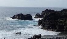 6/3(木)海洋公園はうねりが入っています
