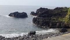 6/13(日)伊豆海洋公園で減圧症復帰プログラム