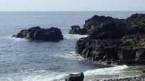 6/18(金)少しうねりのある海洋公園