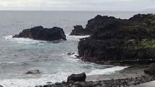6/20(日)伊豆海洋公園で減圧症復帰プログラム