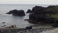 6/22(火)穏やかな海洋公園