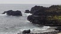 6/30(水)海洋公園でシュノーケリング