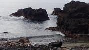 7/20(火)オープンウォーターダイバーコースの海洋トレーニング