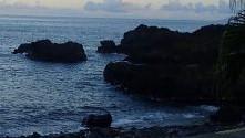 7/24(土)少しうねりの入り始めた海洋公園