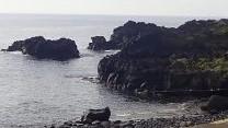 9/14(火)海洋公園でPADIオープンウォーターダイバーコース