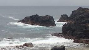 9/17(金)やや風波のある伊豆海洋公園