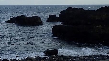 10/8(金)だいぶ透視度も回復してきた海洋公園