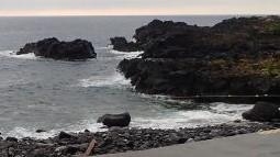 10/10(日)海洋公園で減圧症復帰プログラム