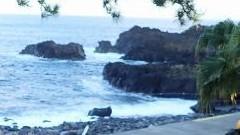 10/15(金)海洋公園でPADIスクーバダイバーコース