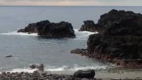 10/16(土)再びうねりが入り始めた海洋公園