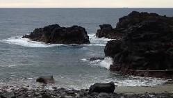 10/17(日)潜水注意でオープンの伊豆海洋公園